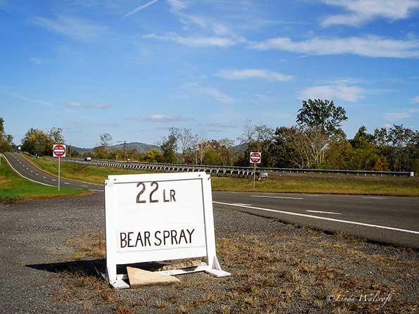 sign selling bear spray