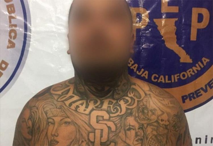 "Capturan al ""Droopy"" en Tijuana, líder de la Mara Salvatrucha en Los Angeles."