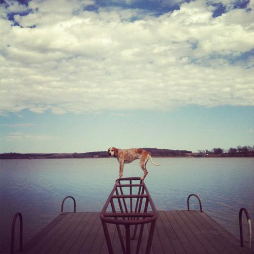 Maddie on Pier