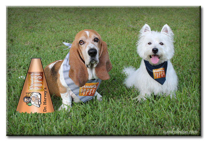Two dogs cheering for Dr. Harvey's Power Pops