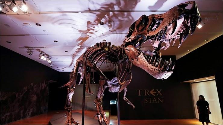 Скелет тираннозавра Стэна