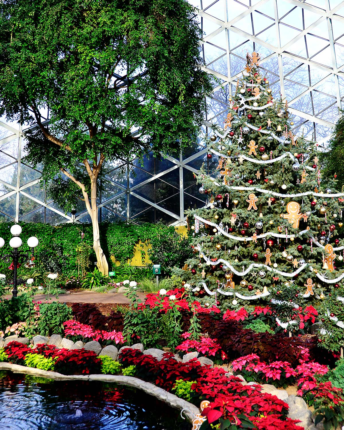 Milwaukee Domes Christmas Show Dome 2015