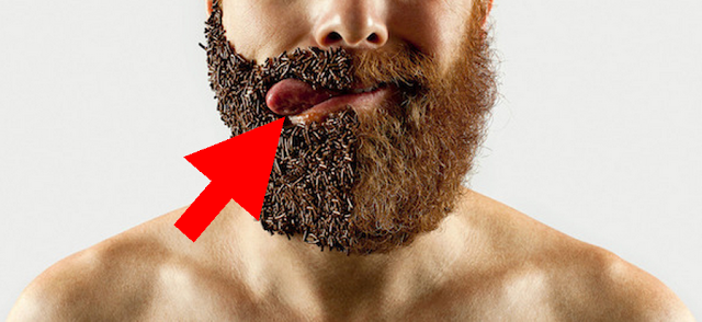 barba neingrijita este o sursa de microbi