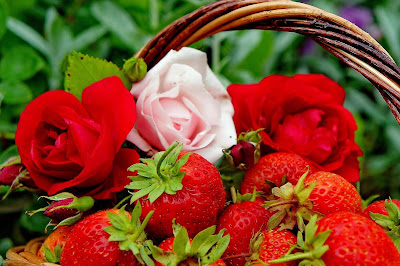 good-mornings-with-rose-strawberry-photos
