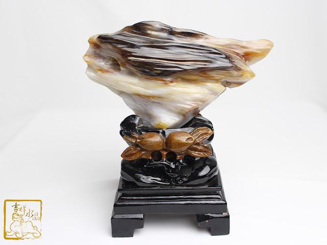 大揭密!樹化玉為什麼珍貴?