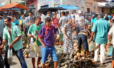 Resultado de imagem para fotos da feira de sao paulo do potengi