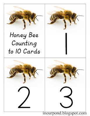 FREE Bee Math Cards from In Our Pond