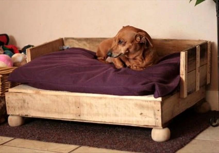 Diy Pallet Dog Bed Ideas Make At Home Pallets Platform