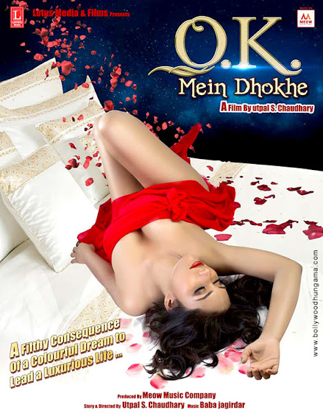 Ok Mein Dhokhe (2016) Movie Poster No. 3