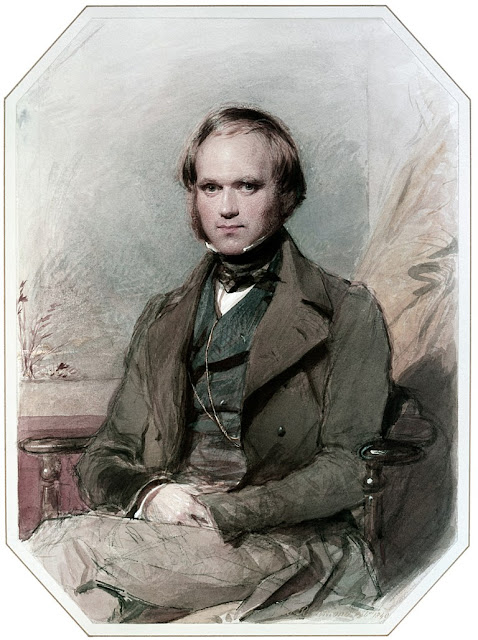 portrait of a young Charles Darwin by G. Richmond. Illustrated By . . . marchmatron.com