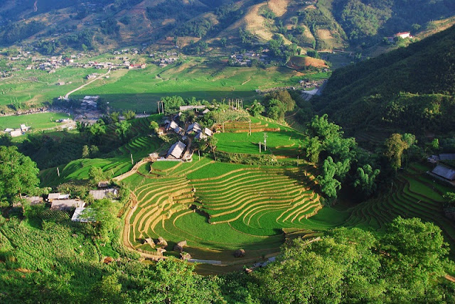 Sapa scenery at the beginning of the new year 2
