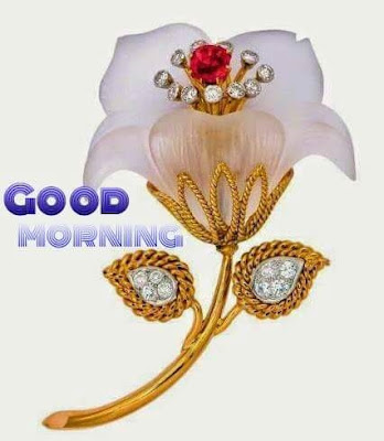 Good Morning Wishes with Flowers Pot