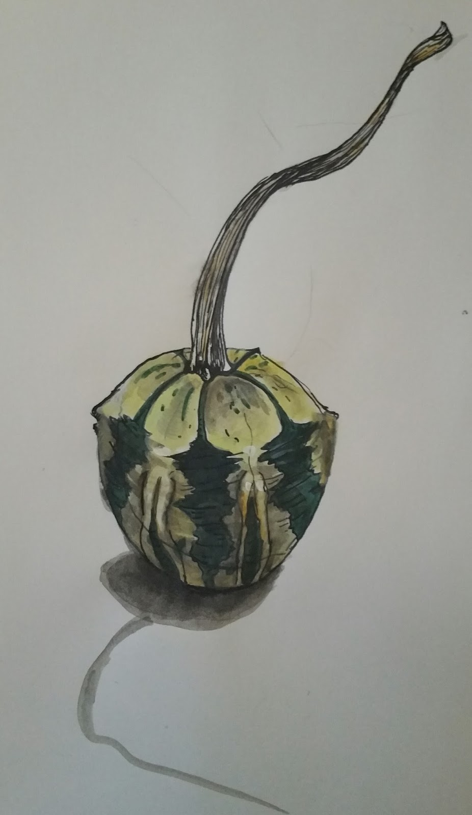 Sketch Of The Week Another Gourd