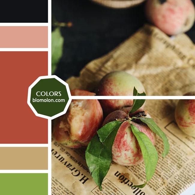 variedad_en_color_moodboard_35