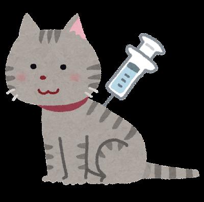 予防注射をする猫のイラスト