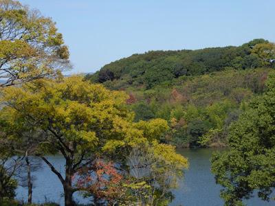 【大阪府枚方市】山田池公園