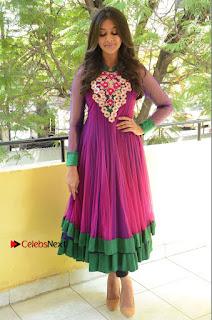Actress Pooja Jhaveri Latest Stills in Purple Salwar Kameezt at Dwaraka Success Meet  0258.JPG