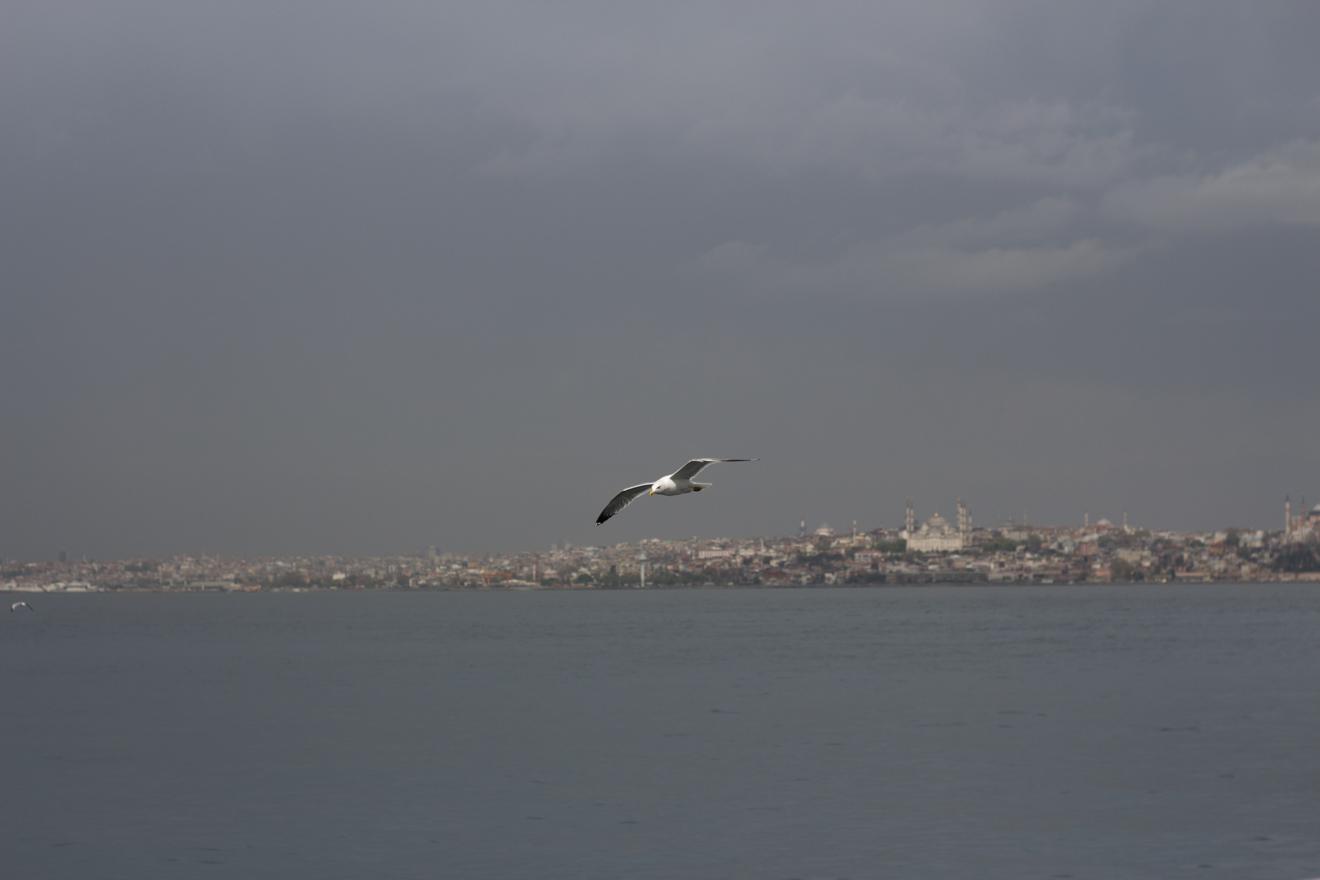 LinnDubh - Istanbul - 8 Tipps für deinen Urlaub in Istanbul  - Sultanahmet