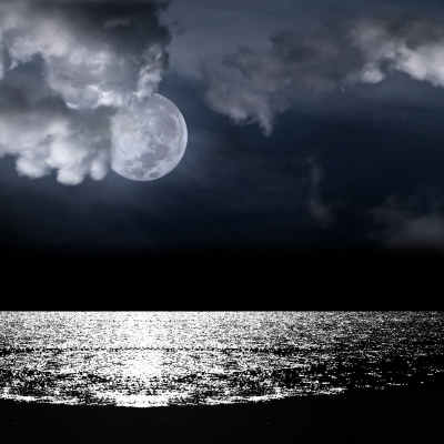 Fishing charters florida for Moon phases and fishing