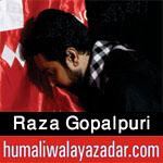 http://www.humaliwalayazadar.com/2017/09/raza-gopalpuri-nohay-2018.html