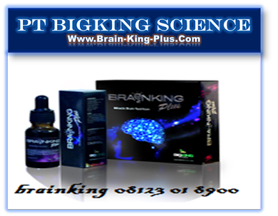 Manfaat Brainking Plus | Brainking Plus Nutrition