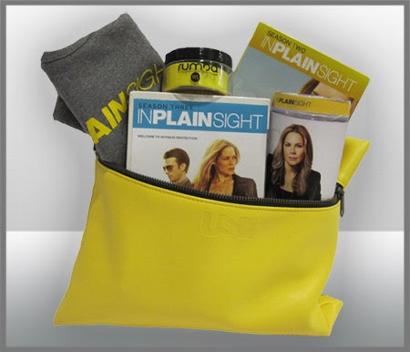 In Plain Sight Prize Pack Giveaway!