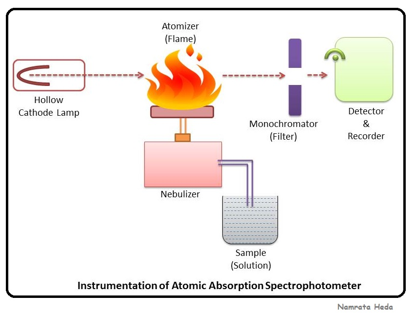 B For Biology Spectrophotometry Atomic Absorption