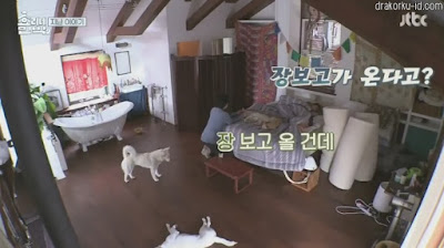 Hyori's Home Stay S2 Episode 4 Subtitle Indonesia
