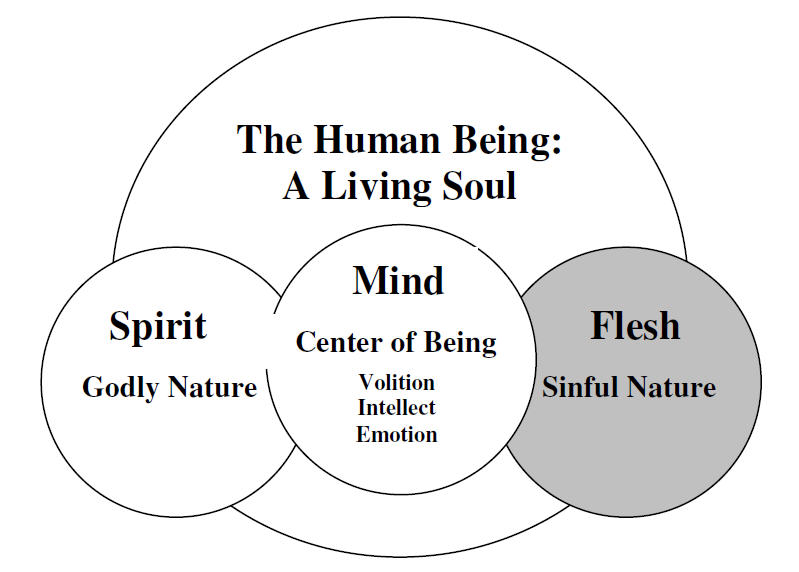We have more than a physical body. We have a mind and a soul.