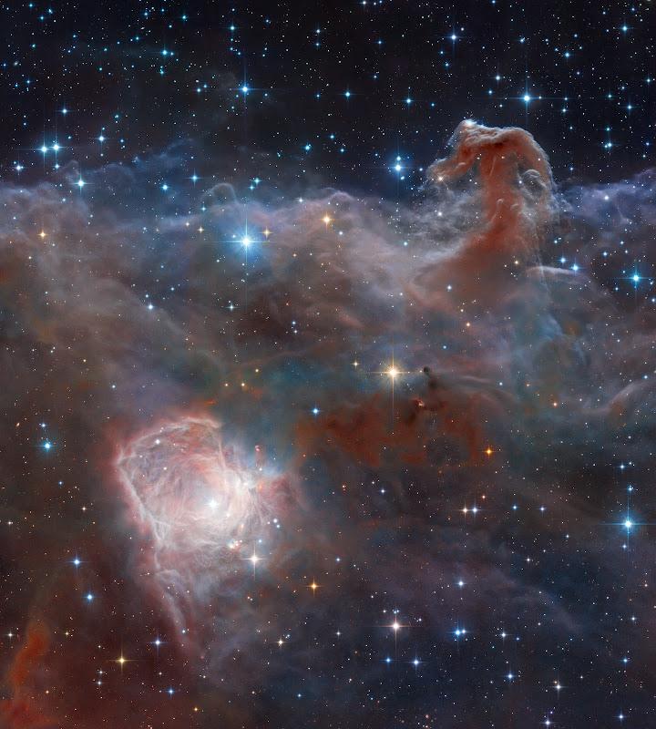 Hình ảnh góc rộng về Tinh vân Đầu ngựa. Kết hợp và xử lý dữ liệu: Robert Gendler, Dữ liệu hình ảnh: ESO, VISTA, HLA, Hubble Heritage Team (STScI/AURA).
