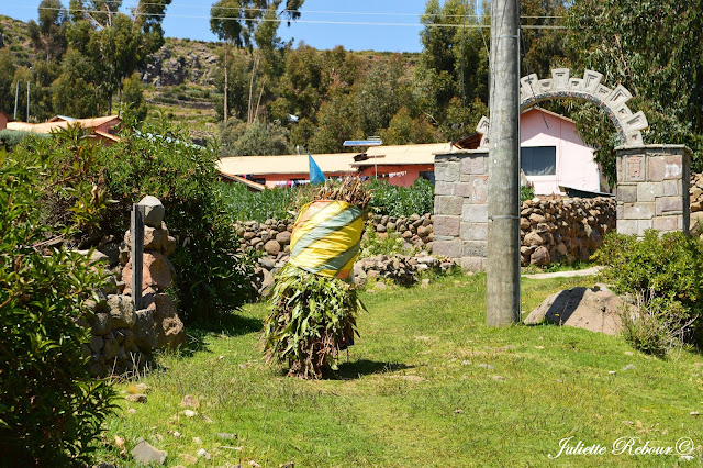 Habitant du lac Titicaca