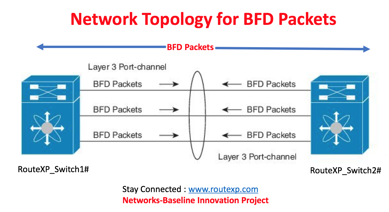 BFD C Bit Feature with BGP - Route XP Networks Private Limited