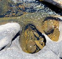 ouro em afluentes do rio tibagi no paraná