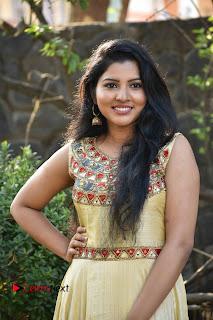 Actress Nayana Nair Stills in Long Dress at Arasakulam Tamil Movie Audio Launch  0002.jpg