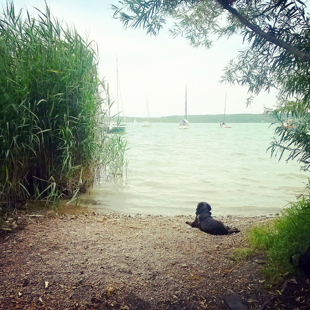 Ammersee im Sommer