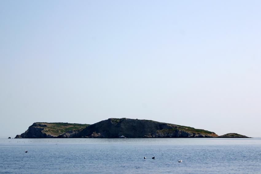 Caprara lub Capraia jedna z wyspb Tremiti