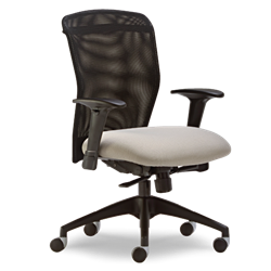Free Shipping Office Chairs
