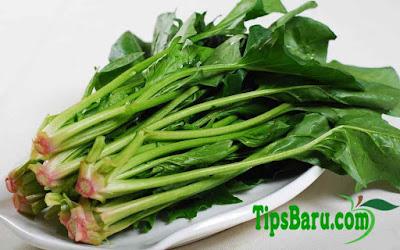 Manfaat Sayur Bayam