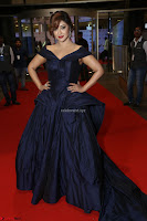Payal Ghosh aka Harika in Dark Blue Deep Neck Sleeveless Gown at 64th Jio Filmfare Awards South 2017 ~  Exclusive 119.JPG