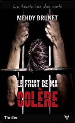 https://lesreinesdelanuit.blogspot.com/2018/03/le-fruit-de-ma-colere-de-mehdy-brunet.html