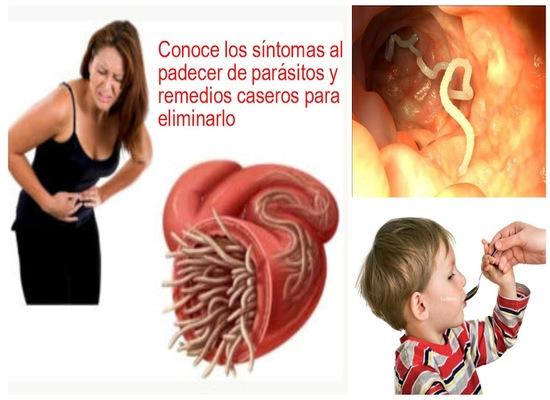 Donde dar los análisis a los parásitos en sterlitamake