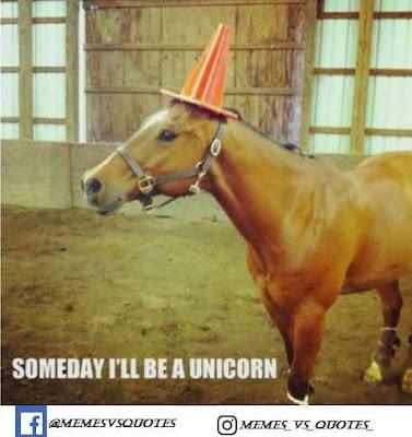 Some I'll Be A Unicorn