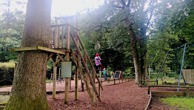 The zip wire in use at Forest Glade Holiday Park