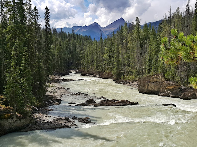 Kicking Horse river natural bridge