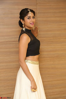 Roshni Prakash in a Sleeveless Crop Top and Long Cream Ethnic Skirt 045.JPG