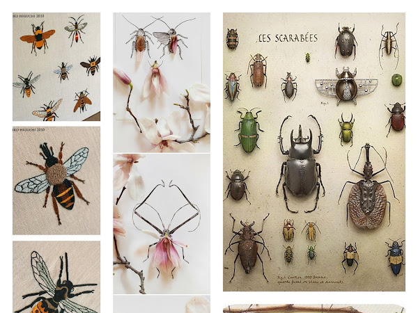 Get Your Inspiration # 7 Insetti / Insects