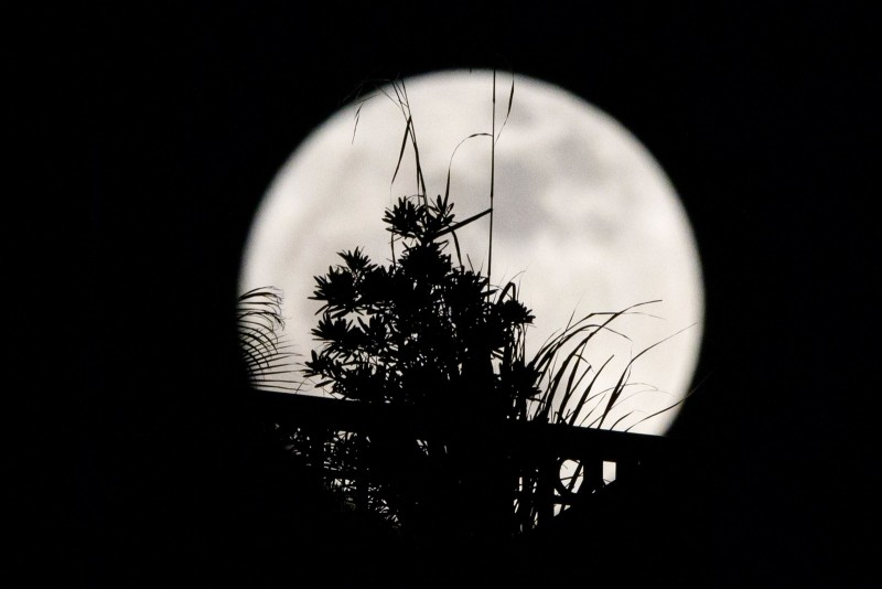 Supermoons can appear up to 14% larger and 30% brighter than a full moon at its furthest distance from earth.