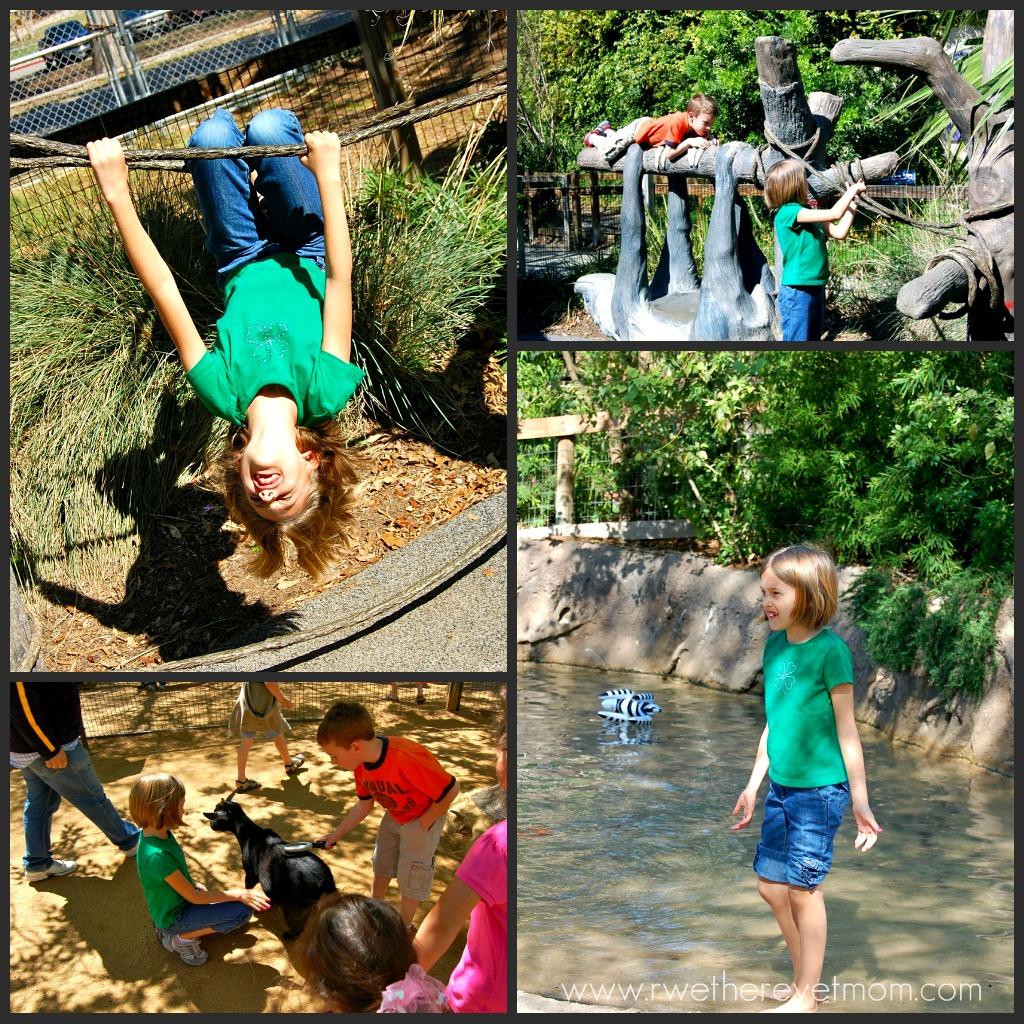 San Antonio Zoo San Antonio Tx R We There Yet Mom