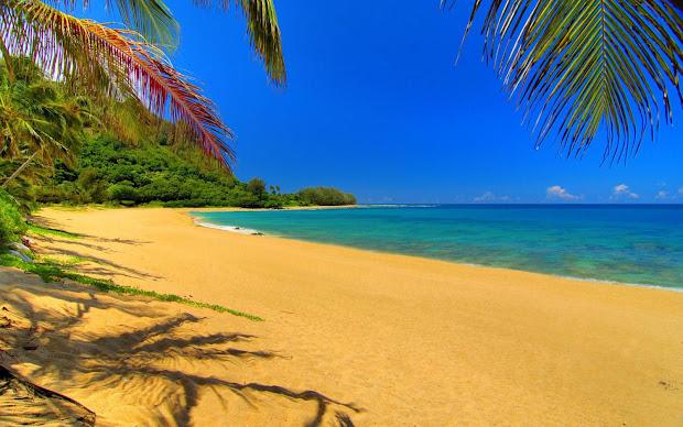 Free Summer Beach Desktop
