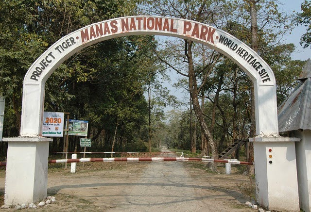 Manas National Park - UNESCO Natural World Heritage Site